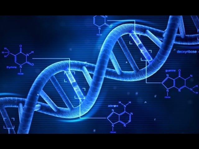 Вчені визнали існування Творця Кінець теорії Дарвіна
