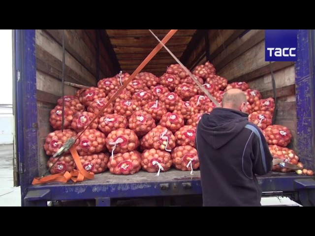 Героин спрятан в лук Фуру с 25 кг наркотиков задержали на овощебазе в Екатеринбурге