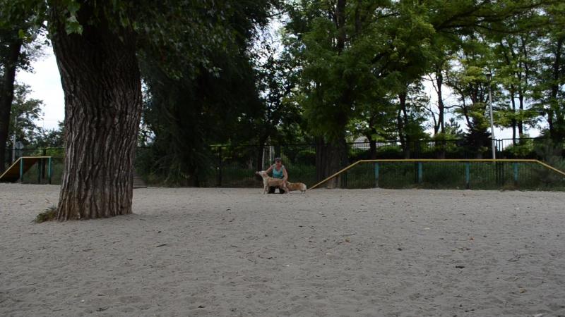 МИшель 14августа 2016г