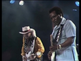 Stevie Ray Vaughan - 'Tin Pan Alley' (with Johnny Copeland)