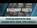 Владимир Авдеев Зачем США изобрели расу MENA соединив евреев арабов турок и иранцев