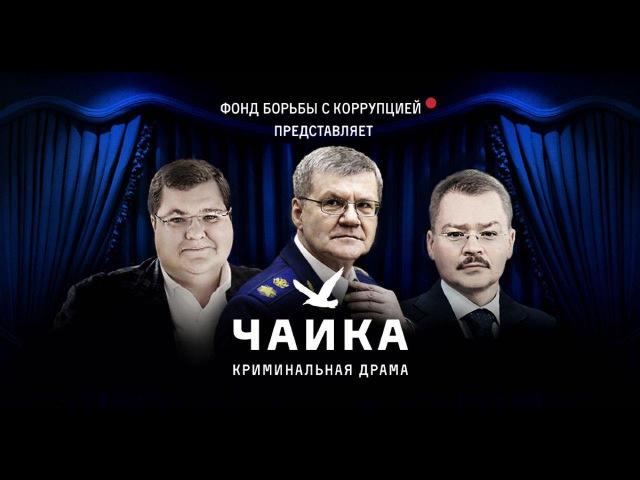 Чайка Фильм Фонда борьбы с коррупцией