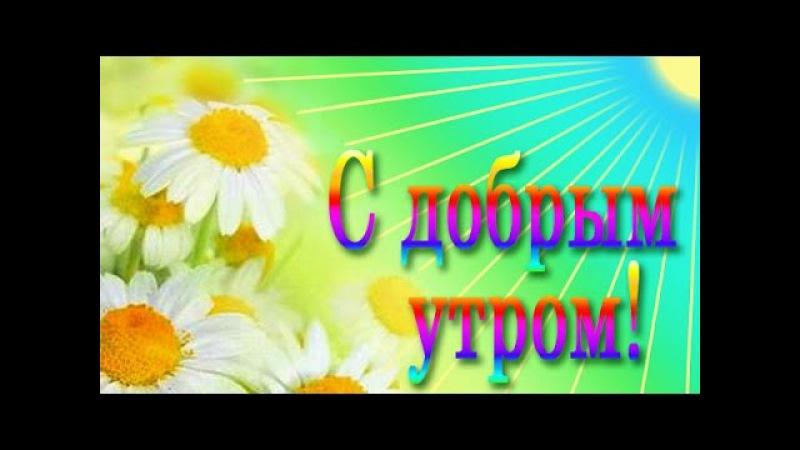 С ДОБРЫМ УТРОМ ДРУЗЬЯ Ирина Гвоздева С Можаровский