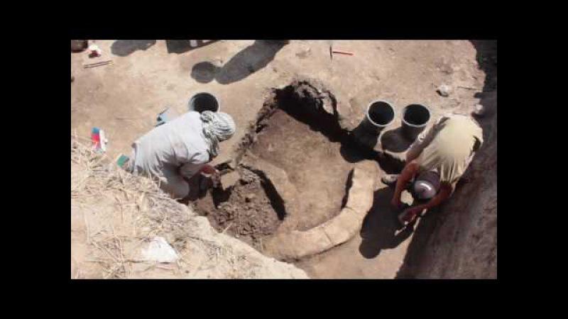 არქეოლოგიური აღმოჩენა გადაჭრილ გორაზე