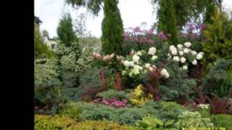 Мой любимый сад My lovely garden