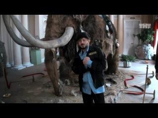Бородач: Реконструкция жизни мамонтов