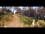 My CryEngine level - for Warhorse Studios level test