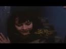 Дикая любовь [1993]
