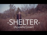 Porter Robinson &amp Madeon - Shelter - Acapella Cover