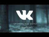 Как скачать весь альбом фотографий Вконтакте одним кликом