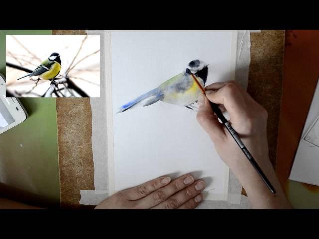 Мастер класс 2 Картина акварелью. Птичка синичка.