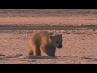 Замерзшая планета (2011) весна