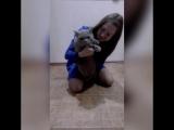 Cat &amp Alina