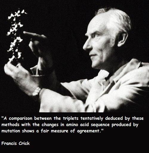 можно ли считать почву живой частью экосистемы