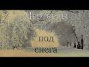 Мертвецы из-под снега The dead from under the snow Короткометражный фильм, 2016 MoonCreepFilms