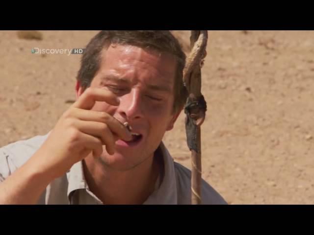 Выжить любой ценой. Сахара (часть2) 2 серия. 2 сезон Desert Survivor