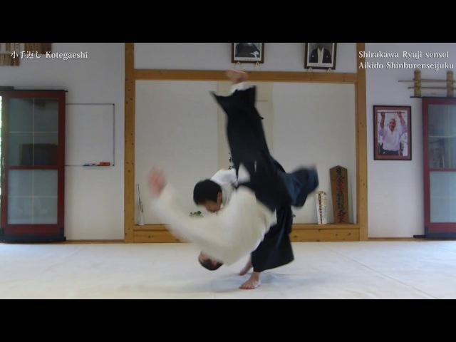 合気道 - 小手返し (AIKIDO - kote gaeshi)