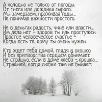 Моисеева Анна