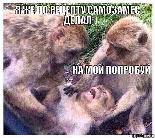 любителям самозамесов))
