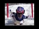 Собака играет в хоккей в костюме вратаря