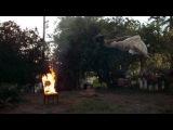 R3hab &amp Felix Snow - Care (Ft. Madi) - Видео Dailymotion