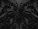 Neurosis_-_Distill_(Watching_The_Swarm)_[live_visuals]