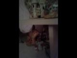 Michelle Chanelle -подарки от фонатов.