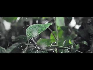 Танго ( Берен-Кыванч-Туба )