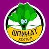 """Хостел   """"Шпинат"""" Саранск"""