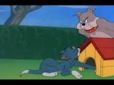 Tom and Jerry - The Dog House