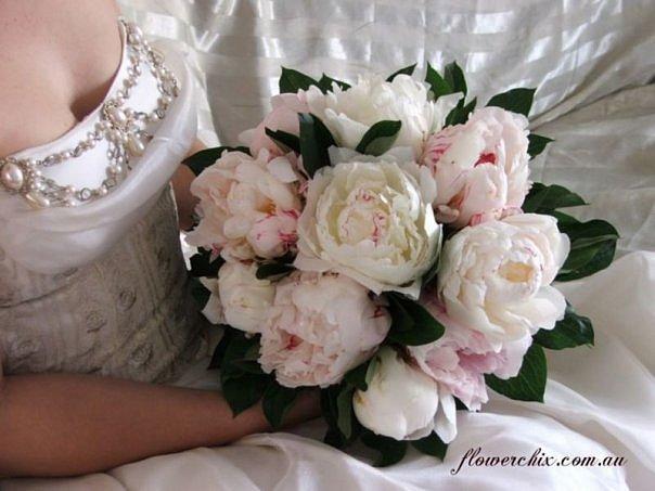 http://cs627.vkontakte.ru/u477639/109600416/x_3597aaa7.jpg