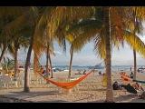 Самостоятельное путешествие в Мексику. Часть 1 Wild trip Mexico. Episode 1