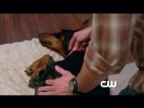 Сверхъестественное/Supernatural (2005 - ...) Фрагмент (сезон 8, эпизод 15)