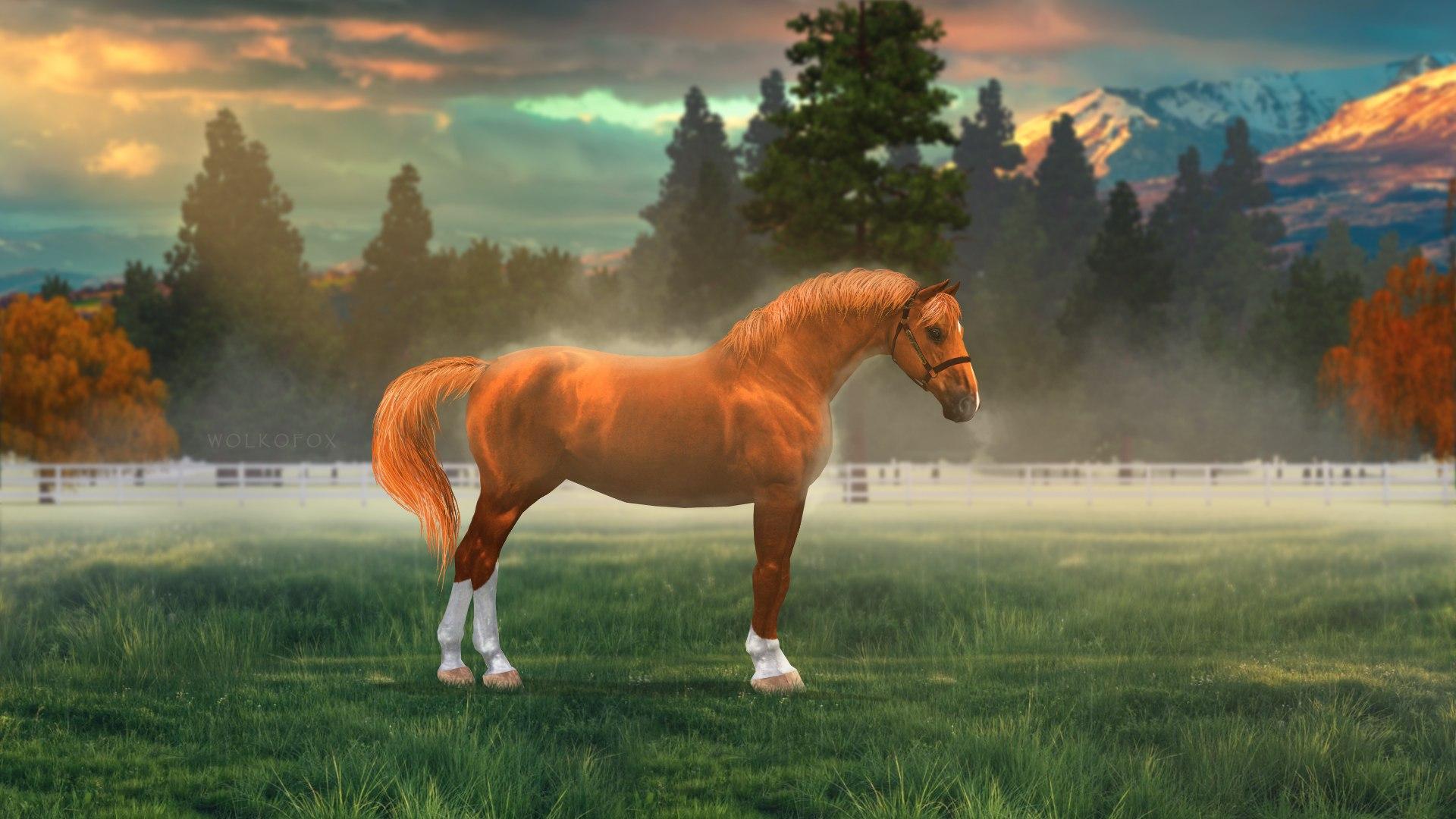 Регистрация лошадей в RHF 2 - Страница 4 ZD5VN9BGUzU