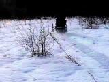 снегоход-палочник с двигателем ИЖ г. Ковров