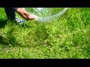 Solar Water From the air and ground Distilled Survivalist water condensation 45 minutes prep per