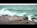 Земфира - Чайка (Неофициальное видео)