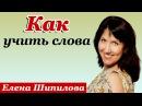 Как учить слова в иностранном языке - Елена Шипилова