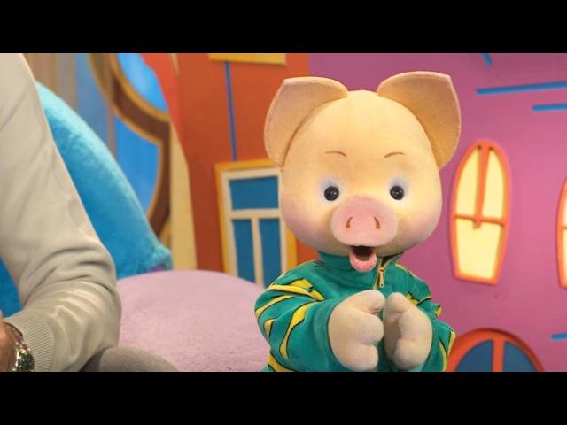 СПОКОЙНОЙ НОЧИ, МАЛЫШИ! - Домашние животные - Мультфильмы для детей - Врумиз