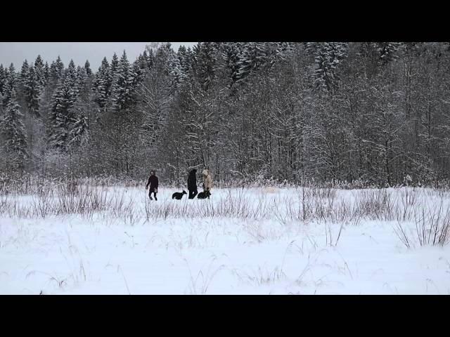 ПО ЗЕМЛЕ САМПО 2016г. прогулка (видео ПИБ)