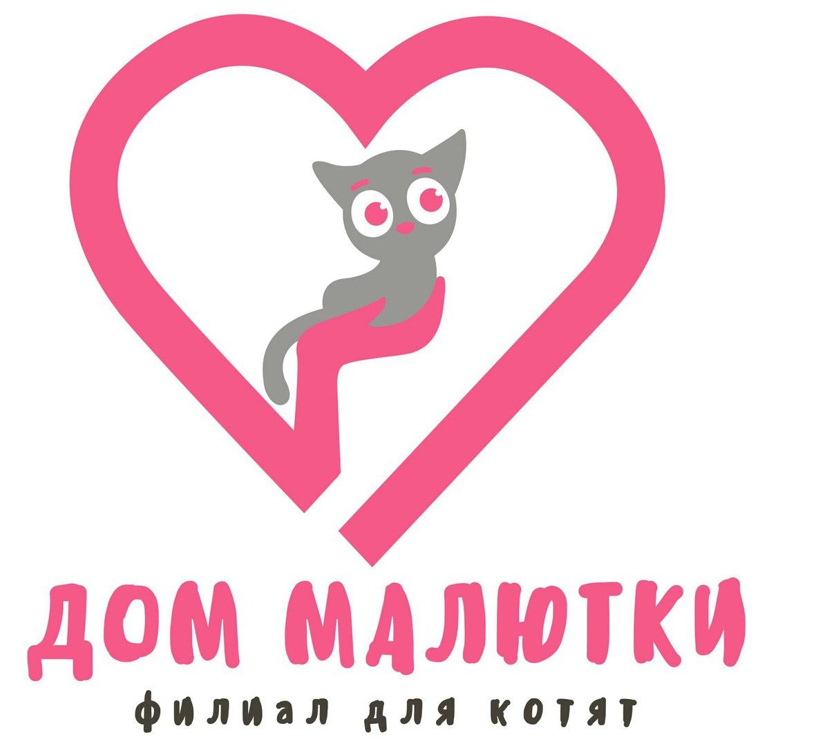 """Афиша Тольятти Филиал для котят """"ДОМ МАЛЮТКИ"""" г.Тольятти"""