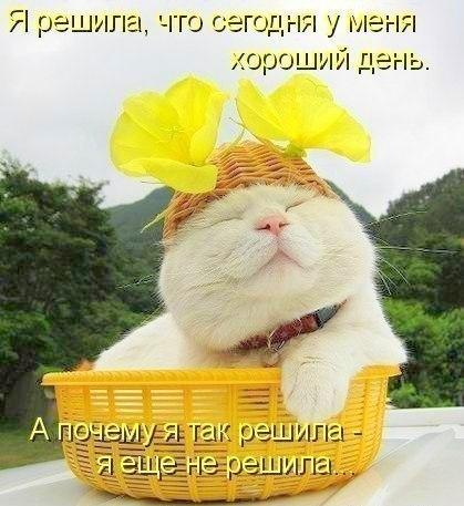 http://cs627117.vk.me/v627117292/b9fb/BsiKPlTsoFc.jpg