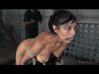 Free shower adult videos