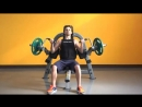 Steelflex Plate Load Series Instruction Video-PLBC (Biceps Curl Machine)