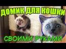 Как я строил домик для кошки своими руками. Кошка в ШОКЕ!  How To Make a Cat House