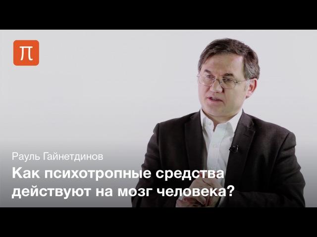 Молекулярные системы действия психотропных средств — Рауль Гайнетдинов