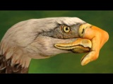 Eagles - Take It Easy -HD