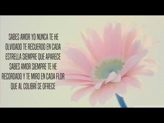 Yo te recuerdo Juan Gabriel Ft Marc Anthony Los Dúo 2 Letra