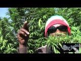 Marlon Asher - Ganja Cowboy OFFICIAL VIDEO By TRU REELZ PROD.