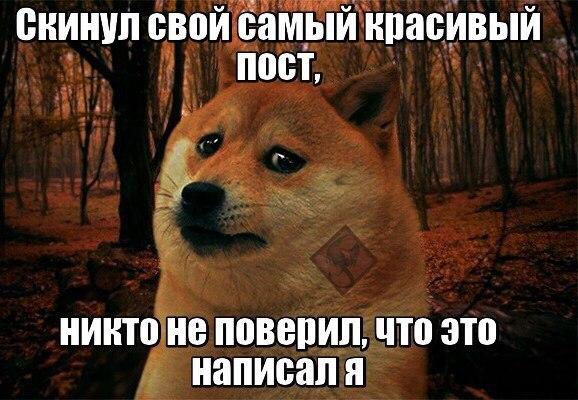 https://pp.vk.me/c627118/v627118055/3101/gKkt1_Zc0zQ.jpg